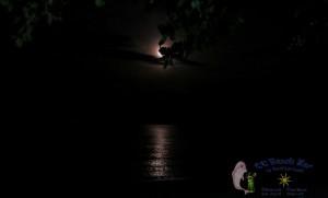 27th Moon-10