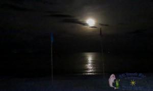 27th Moon-8