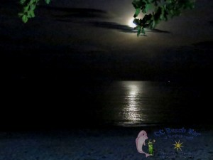 27th Moon-9