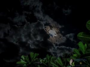 21st moon-12