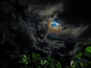 21st moon-17