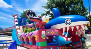 12C. Bouncy castle (5)