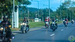 2. Bikes (14)