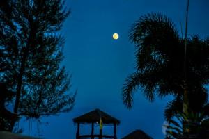 13th Moon