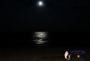 10th moon-6