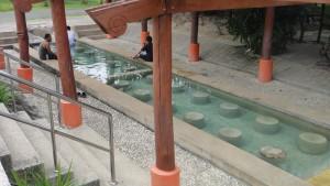 Hot Springs (6)