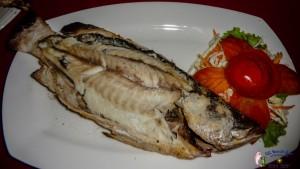25th Seafood-3