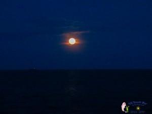 28th June Moon-4