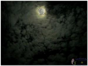 25th Moon-2