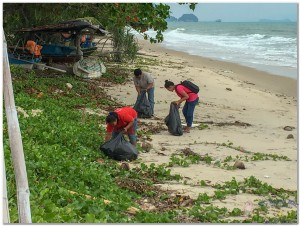 Beach Cleaning 3rd nov  (2)