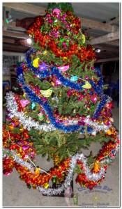 3rd Christmas tree