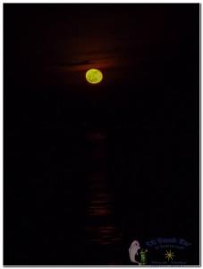 17th Moon-2