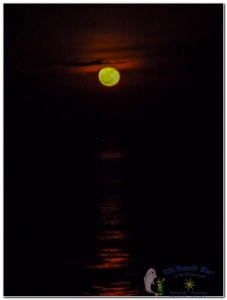 17th Moon-3